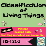 Classification Kingdoms Printable Matching Activity