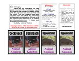 Kingdoms of living things Card Game (digital download)