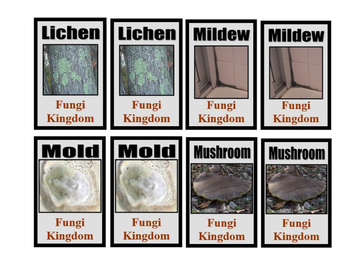 Kingdoms of living things Card Game (digital download)