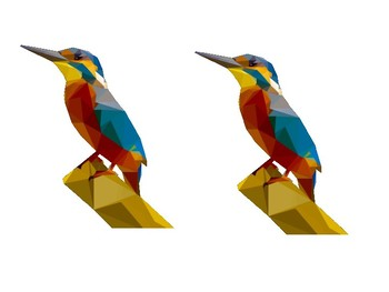 Kingfisher Picture Pack