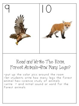 Kissing Hand--Forest Animals--read the Room