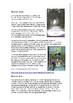 Klontarf and Sea Caves Colin Thiele bundle
