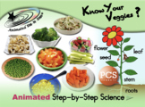 Know Your Veggies? Animated Step-by-Steps Science - PCS