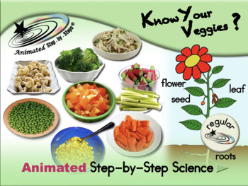 Know Your Veggies? Animated Step-by-Steps Science - Regular