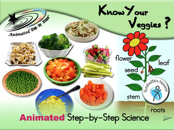 Know Your Veggies? Animated Step-by-Steps Science - SymbolStix