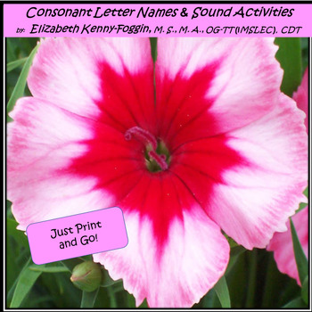 Know the Code:  Consonant Letter Names and Sound Activities