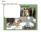 Knuffle Bunny Packet