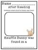 Knuffle Bunny:Book Study!