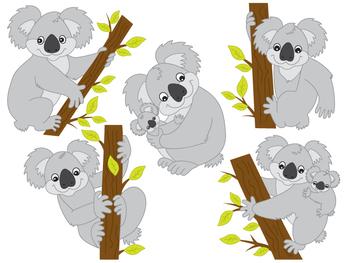 Koala Clipart - Digital Vector Koala, Tropical, Australia, Koala Bear Clip Art