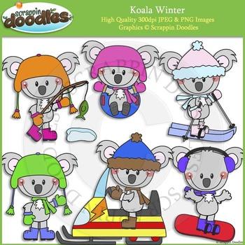 Koala Winter