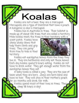 Koalas Informational Mini-Unit: nonfiction passages, research, response sheets