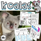 Koalas: Informational Interactive Read-Aloud Lesson Plans