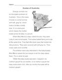 Animal: KOALA Story & Info Text + 7 Multiple Choice Reading Comprehension Qs