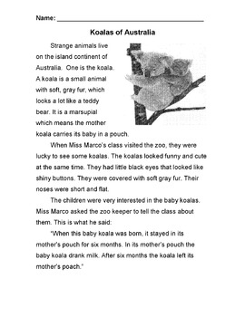 Animal: KOALA Story & Info Text + 7 Multiple Choice Reading Comprehension Qs