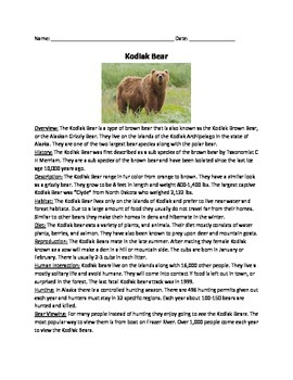 Kodiak Bear - Review Article questions vocabulary word search