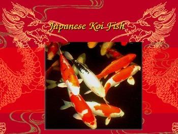 Koi Fish and the Chinese Paint Brush