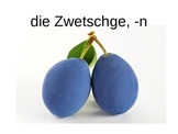 Komm Mit! German Level 2 Chapter 2-2 vocabulary picture presentation