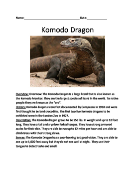 Komodo Dragon - lesson 2 page article questions vocabulary word search
