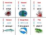 Korean Language Flash Cards Set - sea life set of 36 cards