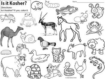 Kosher Animal Coloring