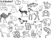 Kosher Animal Coloring (Distance Learning)