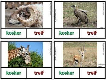 Kosher vs. Non-Kosher Animals -Animals of the Bible Activities
