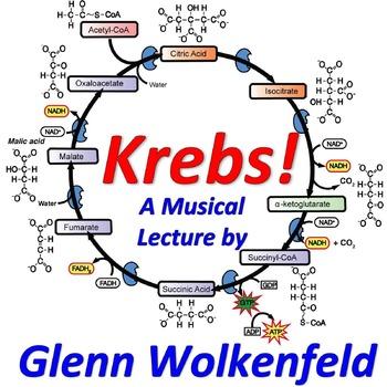 Krebs! (Mr. W's Krebs Cycle Music Video)