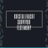 Kristallnacht Survivor Testimonial Questions