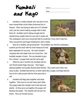 Kumbali and Kago: A Cheetah and Puppy Friendship