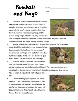 Kumbali and Kago: A Cheetah and Puppy Friendship