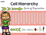 L.6.1.6. Cell Hierarchy MiniLesson