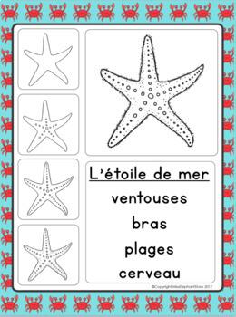 French Immersion Writing Kindergarten / Grade 1 Ocean Theme (l'océan)