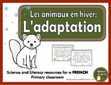 L'adaptation - Les animaux en hiver (French adaptation- Animals in Winter)