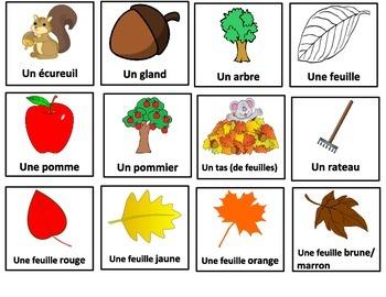 L'automne (mur de mots, mots cachés et jeu bingo)