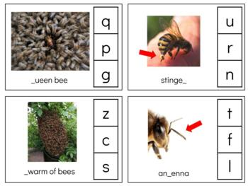 L129: missing sound BEE clip cards