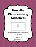 LA 6.3 Comp. 3 Describe Pictures Using Adjectives Extended Standards AAA