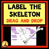 LABEL SKELETON BONES Drag and Drop Activity Digital Distance Learning