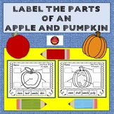 LABEL THE PARTS OF AN APPLE AND PUMPKIN