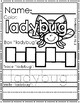 LADY BUG LIFE CYCLE Journal