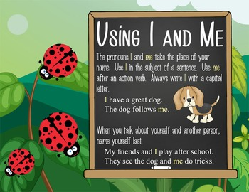 LADY BUGS - 2nd grade GRAMMAR posters / Scott Foresman Reading