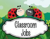 LADY BUGS - Classroom Helpers JOBS clip chart