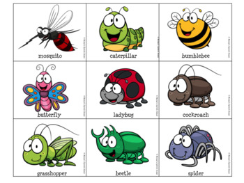 LADYBUG LADYBUG WHAT DO YOU SEE  SPRING AAC/PECS Early Reader Pre-K Speech