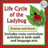 LADYBUG LIFE CYCLE Science, Literacy and Math Activities