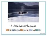 "LAMP AAC book- ""Ocean Animals"""