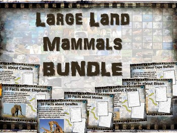LARGE LAND MAMMALS BUNDLE 7 PPT ELEPHANT GIRAFFE BISON ZEBRA BUFFALO MOOSE CAMEL