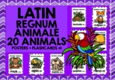 LATIN CLASSROOM DECOR: 20 ANIMALS FLASHCARDS
