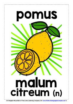 LATIN FRUITS & VEGETABLES FLASHCARDS POSTERS
