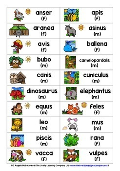 LATIN FOR CHILDREN - 80 ANIMALS GAMES CARDS & REFERENCE SHEET