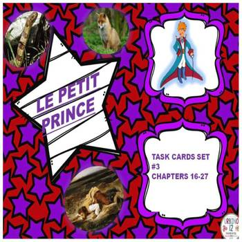 LE PETIT PRINCE : VOCABULARY TASK CARDS SET # 3 (Chapters 16-27)