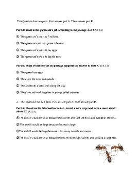 LEAP LIKE Reading Comprehension Quiz: Ants